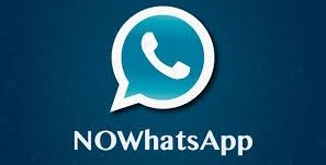 Download NoWhatsApp APK V9.86 Anti-Ban Latest Version